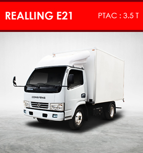 Camion DONGFENG REALLING E21